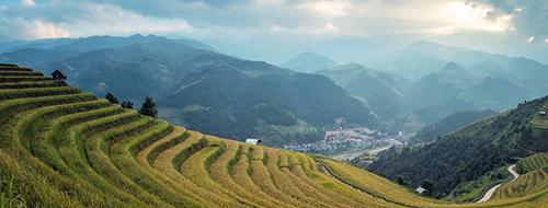 Bali-rijstvelden-uitzicht