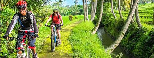 Indonesi Carang Sari Village Fietstour Ubud