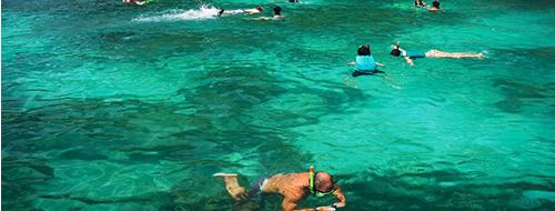 Snorkelen rondom Menjangan Island WatersportSnorkelen